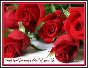 trust God roses