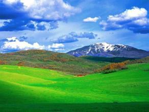 meadow hills2