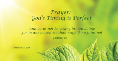 gods-timing-is-perfect